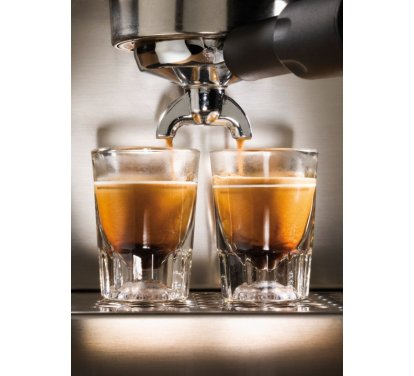 Рожковая кофеварка Gaggia Classic - фото 4