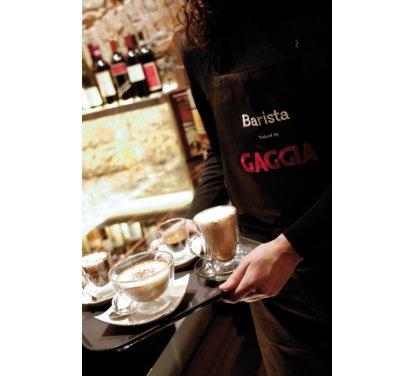 Рожковая кофеварка Gaggia Classic - фото 5